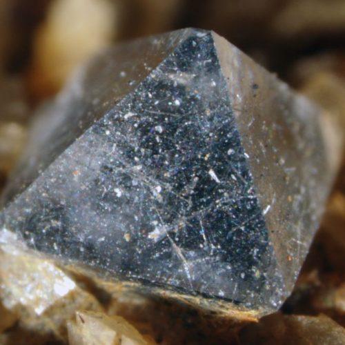 Výstava minerálov, skamenelín a drahých kameňov